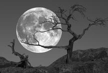 Avec la lune / by Angelle Bourassa Tousignant