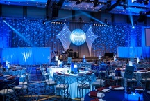 Event: Blue and White Gala; March 2013