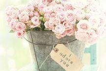 fleurs / #flowers #fleurs  / by Connie Inman Somero