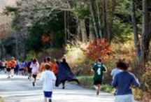 Fall Events in Litchfield Hills and Fairfield County / The best events and fun in Litchfield Hills and Fairfield County Connecticut in the fall.