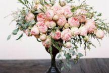COMPASS { floral } / Inspiration for unique bouquets, centre pieces and arrangements.