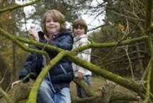 Buitenspelen: bos, bomen & takken / Buitenspelen