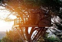 Treehouses / Reliving your childhood is always fun