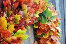 Autumn Ideas & Recipes / Now its getting cold & dark...here are some Autumn Ideas & some tasty recipes to try out!