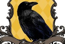 Ravenclaw & Hufflepuff ~ My Houses