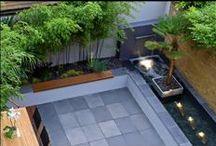 Contemporary gardens / Modern ideas for the garden