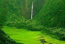 Heavenly Hawaii