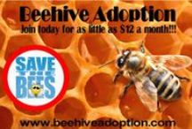 Beehive Adoption / Beehive Adoption:  Adopt-A-Hive today