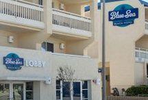 Blue Sea Beach Hotel / Photos of the newly renovated Blue Sea Beach Hotel in Pacific Beach!