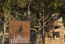The Lodge at Tiburon