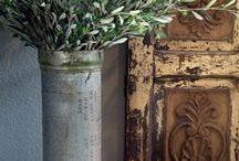 Olive Trees, Olive Trunks, Olive Groves / Inspirations