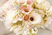 Wedding's Galore