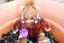 Gruffalo Gardening Ideas / Ideas and inspiration to get the little ones out in the garden! Get those fingers green!