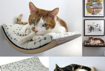 Pets and animals_OFFmag / by OFF mag