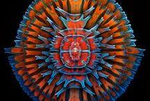 electronMicroscope atomicForceMicroscope