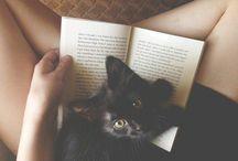 Cats & Kittens / ~cute little creatures