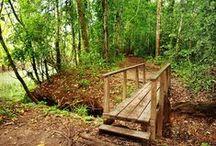 Senderos ecológicos Marasha Tours / www.reservamarasha.com