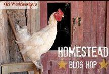 Homestead Blog Hop- Featured Posts / Best homesteading posts from Homestead Blog Hop. #bloghop #homestead #farming #homesteadbloghop