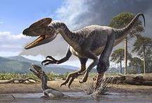Dinos and evolution