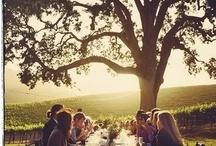 Ideal wine-drinking setups