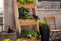 Tuin idee*Garden idea / Tuinideeen