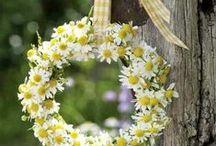 Wreaths DIY/ kransen maken / Allerlei ideeën voor kransen zelfmaken