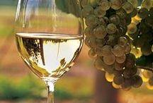 WINE &  CHEESE. PLEASE! / by tona baga