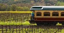 Wine Travel / A list of wine travel resources including winery day tours, wine weekend itineraries, and must visit wineries.