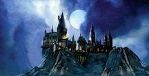Hogwarts / Harry Potter & Fantastic Beasts