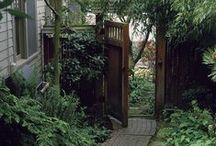 Autour de la maison / Extérieur - jardin - idées