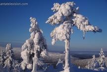 Laponia Fotos / LA LAPONIA MÁGICA Laponia mágica es la región hogar de Papá Noel y además es la región más al norte de Finlandia. Descubre las mejores destinaciones de Laponia finlandesa, la verdad detrás del reno, nieve, hielo, etc.