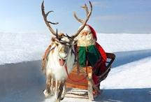 Papá Noel Fotos / Papá Noel en Laponia debe ser una de las más conocidas personas en el mundo. Pero incluso el Papá Noel tiene secretos que solo los elfos saben. Así que ven a descubrir los grandes secretos de Papá Noel en Finlandia.