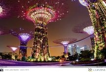 Singapore... we loved our Holiday in 2014