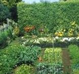 Huerta en casa / El huerto en el jardín, en su concepto se trata de espacios cubiertos o no para el cultivo de flores, aromáticas, hortalizas y frutales a escala doméstica, sin que por ello se menosprecie la calidad de los productos obtenidos en ellos.