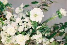 Elegant & Green Wedding / Inspiration pour mariage dans les tons blancs et verts dans un style traditionnel élégant