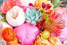 Flowers / Hääkukat
