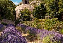 J'adore la Provence