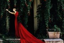 Haute couture / Art of couture