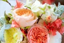 Amazing blooms ;-)