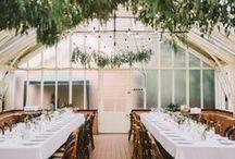Weddings: The Reception
