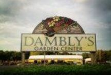 Dambly's Garden Center / Photos from around the store