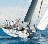 Nautica Vismara / Per gli amanti del mare. Le imbarcazioni Vismara Marine parte del polo nautico di Cose Belle d'Italia
