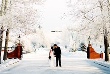 January wedding inspiration