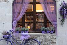 L a v e n d e r   L i l a c   P u r p l e / Beautiful colours of lavender, lilac, purples...