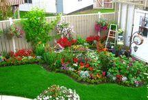 Ideas para el jardin / by Olivia Acosta