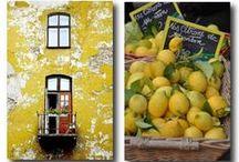 Paint & Windows of the world