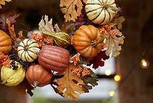 Seasons: Autumn / Estaciones: Otoño Autumn. Every season has something special!