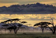Tanzanie/Tanzania