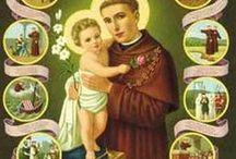 Heilige Antonius / Padua