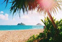 Beach Favorites / All beach, all the time